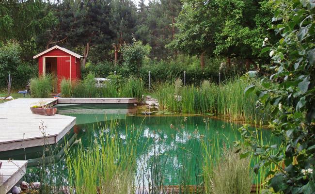 schwimmteich kosten preise schwimmteich kosten naturpool kosten ein berblick f r schwimmteich. Black Bedroom Furniture Sets. Home Design Ideas