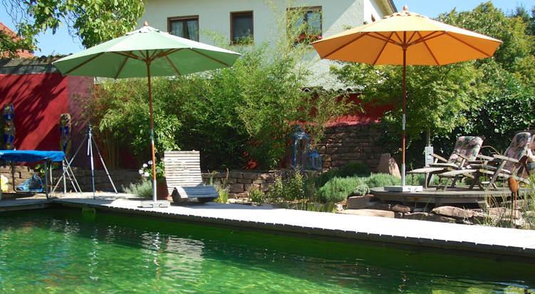 schwimmteiche und naturpool von seydell garten und. Black Bedroom Furniture Sets. Home Design Ideas